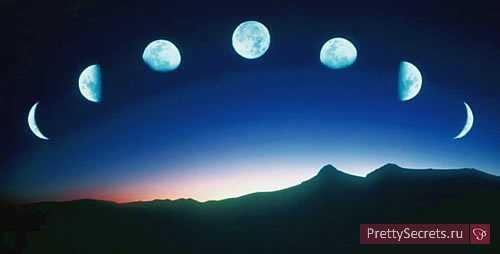 лунный календарь пересадки комнатных растений на 2019